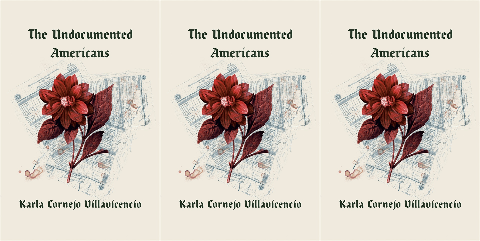 Cover of The Undocumented Americans.